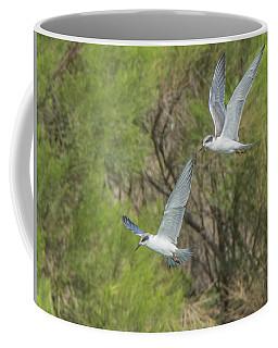 Forster's Tern 5706-092217-1cr Coffee Mug