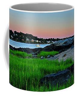 Fort Pickering Light Through The Tall Grass Salem Ma Coffee Mug