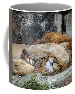 Fort Worth Zoo Sleepy Lion Coffee Mug