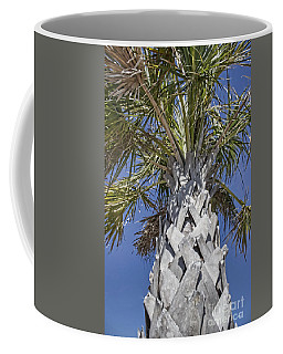 Fortified Foundation Palm Coffee Mug