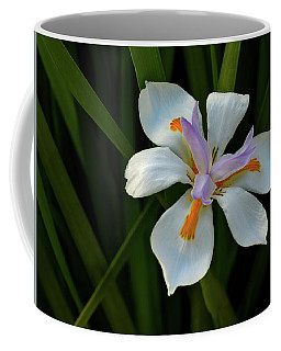 Fortnight Lily Coffee Mug