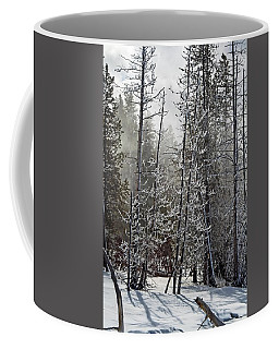 Fountain Paint Pots Shrouded In Snow And Ice Coffee Mug