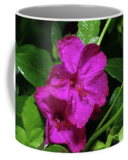 Coffee Mug featuring the photograph Four O'clock At 9am  by Richard Rizzo