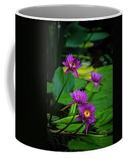Four Waterlilies Coffee Mug