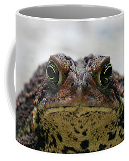 Fowler's Toad #3 Coffee Mug