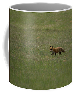Fox In Field Coffee Mug