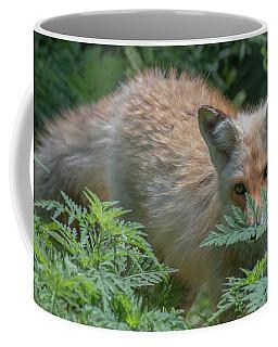 Fox In The Ferns Coffee Mug