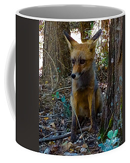 Fox Joy  Coffee Mug