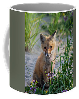 Fox Kit Coffee Mug