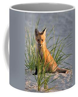 Fox Kit Portrait Coffee Mug