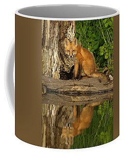 Fox Reflection Coffee Mug