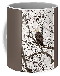 Fox River Eagles Coffee Mug by David Bearden