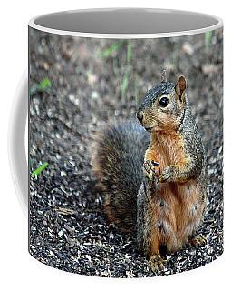 Fox Squirrel Breakfast Coffee Mug