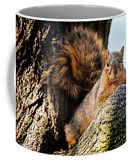 Fox Squirrel Watching Me Coffee Mug
