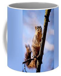 Fox Squirrel's Last Look Coffee Mug
