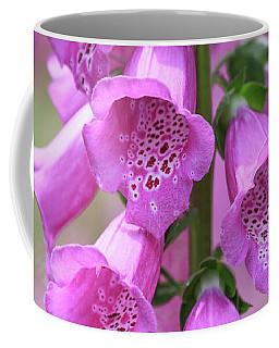 Coffee Mug featuring the photograph Foxglove Flowers by Edward Fielding