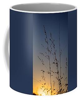 Foxtail Sunset Coffee Mug