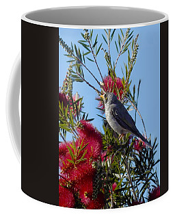 Coffee Mug featuring the photograph Fred In The Bottlebrush by Mark Blauhoefer
