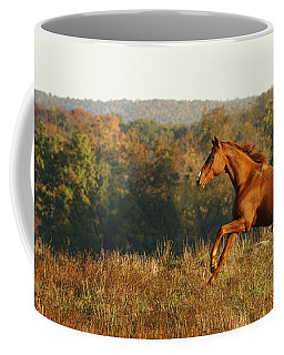 Freedom In The Late Afternoon Coffee Mug