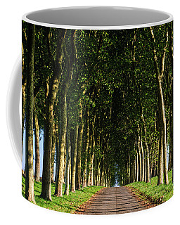 French Tree Lined Country Lane Coffee Mug
