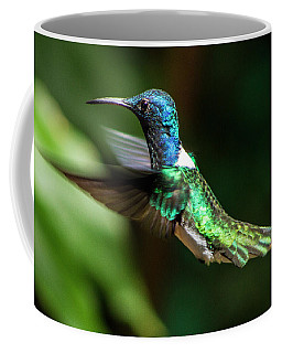 Frequent Flyer, Mindo Cloud Forest, Ecuador Coffee Mug by Venetia Featherstone-Witty