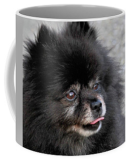 Coffee Mug featuring the photograph Fresh Dog by Debbie Stahre
