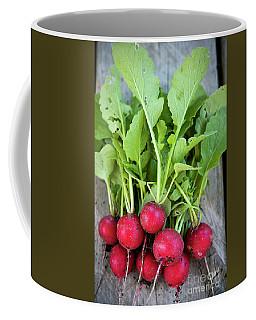 Coffee Mug featuring the photograph Freshly Picked Radishes by Elena Elisseeva