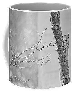 Friend Or Foe? Coffee Mug