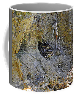 Coffee Mug featuring the photograph Friendly Frogs by Al Powell Photography USA