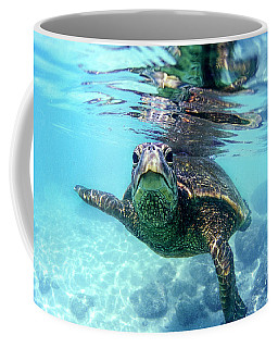 friendly Hawaiian sea turtle  Coffee Mug