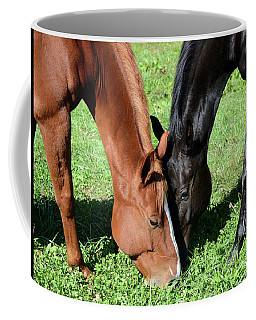 Coffee Mug featuring the photograph Friends Forever by Julia Wilcox