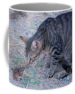 Friends Or Enemies  Coffee Mug