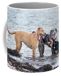 Friends Coffee Mug by Stephanie Hayes