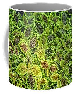 Friendship Plant Coffee Mug