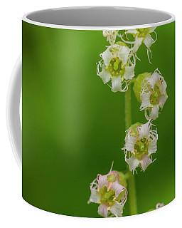 Fringed Cups Coffee Mug