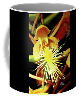 Coffee Mug featuring the photograph Fringed Yellow Orchid by Meta Gatschenberger
