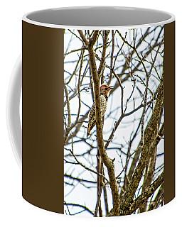 Frisky Flicker Coffee Mug