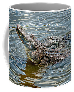 Coffee Mug featuring the photograph Frisky In Florida by Christopher Holmes