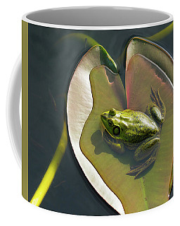 Frog Chilling On A Lilly Pad Delray Beach Florida Coffee Mug