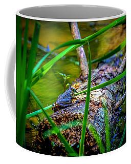 Frog On A Log 1 Coffee Mug