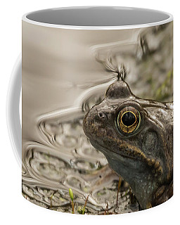 Frog Portrait Coffee Mug