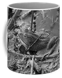 The Frog Remains Coffee Mug