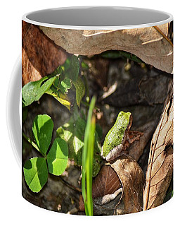 Froggy  Coffee Mug
