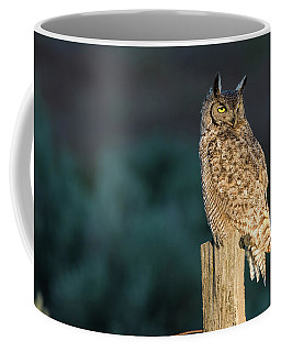 From Dusk Til Dawn Coffee Mug by Scott Warner