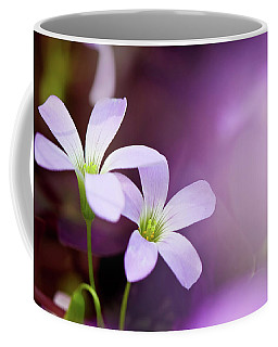 From Garden Of Dream Coffee Mug