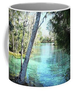 From Spring 3 To Spring 2 At Three Sisters Springs Coffee Mug