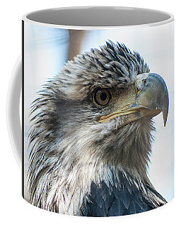 From The Bird's Eye Coffee Mug