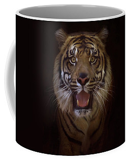 Coffee Mug featuring the photograph From The Darkness by Elaine Malott