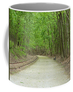 Coffee Mug featuring the photograph From The Summit by Donald C Morgan
