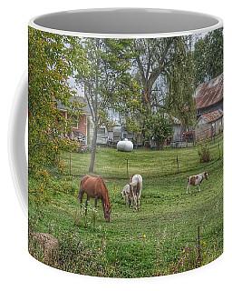 1008 - Front Yard Ponies Coffee Mug